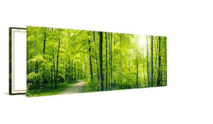 Panorama op canvas 120x40