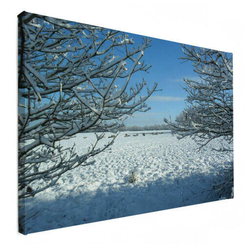 winterbeeld op canvas